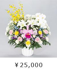 清楚な美しさ 洋花